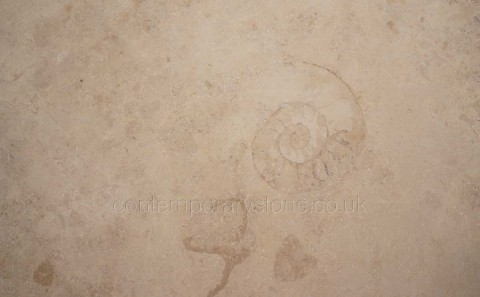 jura beige gold limestone close-up