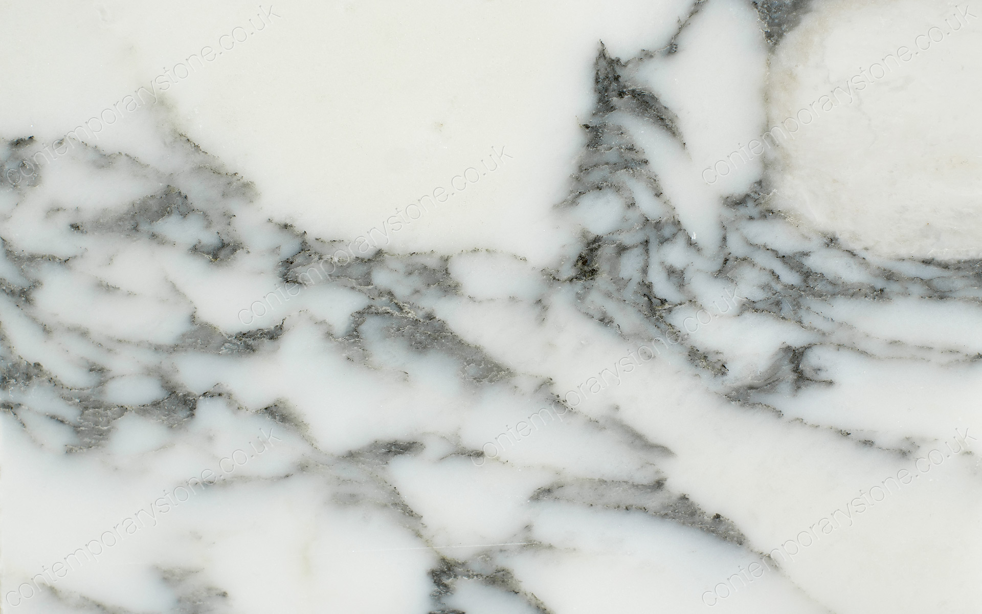 arabescato marble close-up