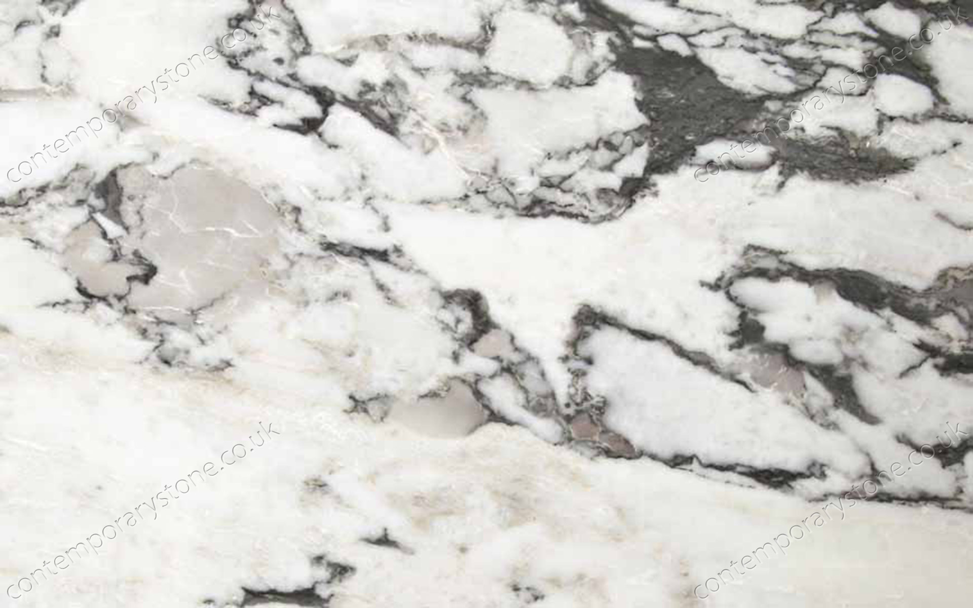 Arabescato Vagli marble close-up