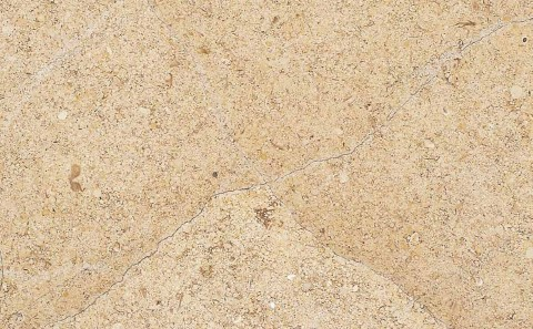 Beauarnais limestone close-up