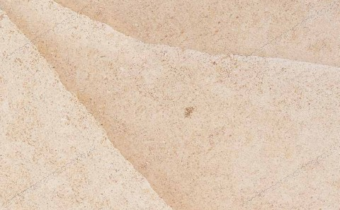 Beauharnais limestone close-up