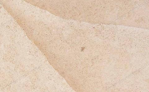 Beauharnais limestone close-up