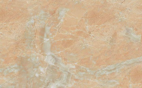 Breccia Oniciata marble close-up