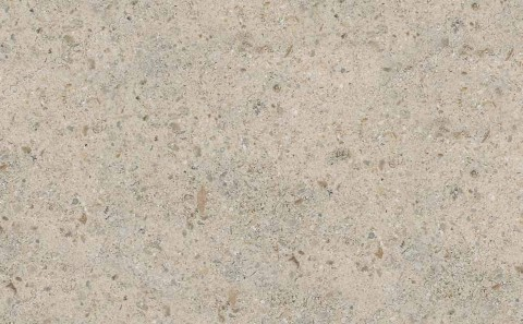 Gascogne Blue limestone close-up