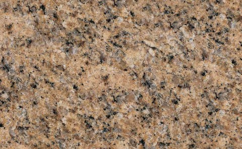Giallo Veneziano granite close-up