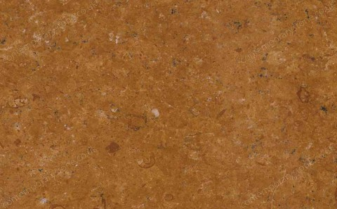 Indus Gold marble close-up