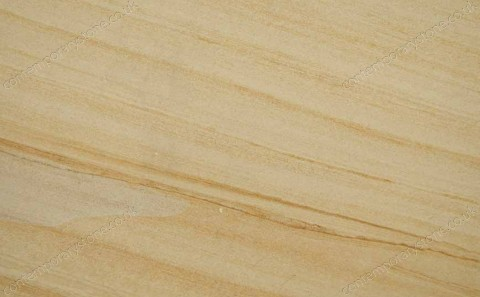 Teak Wood limestone close-up